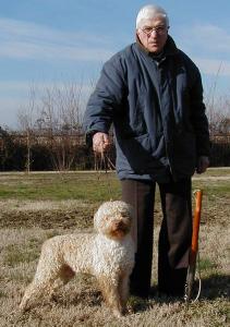 2003bengy